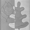 1957_elms_024