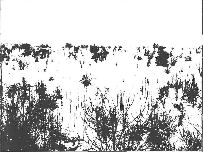1961_elms_027