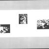 1961_elms_084