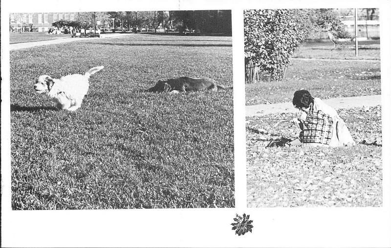 1972_elms_153