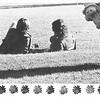 1972_elms_146