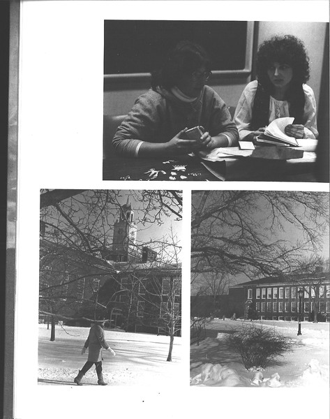1981_elms_024