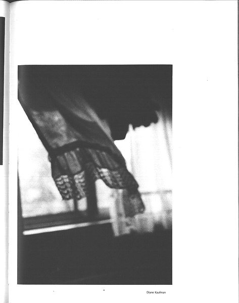 1981_elms_145