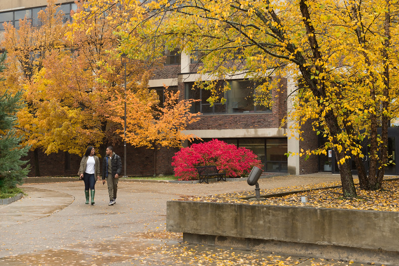 Fall campus scenic at Buffalo State College.