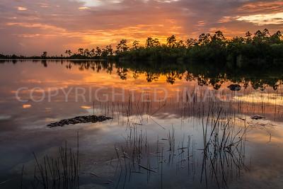 Pine Glades Lake, Sunset - Everglades National Park - June 2014