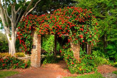Fairchild Garden, Miami, Fl