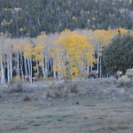 2012-10-17-21 - Philmont Autumn Adventure
