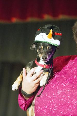 CHRISTMAS BY THE BAY - Baldwin Humane Society Nov 2015
