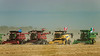 Guinness World Record attempt of the most combines harvesting on a field simultaneously, Winkler, Manitoba, Canada