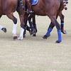 POLO AT THE POINT 2016-9999