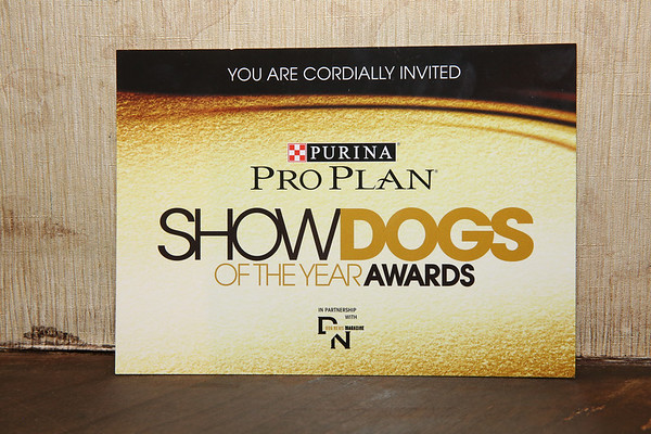 Show Dogs of the Year 2.10.18