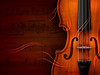 Violin Lesson<br /> Value: Priceless!<br /> Minimum bid: $75<br /> Private one-hour violin lesson with Kristin Kemper.