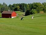 2011 Struthers Parkinson's Golf & Bridge Challenge Auction