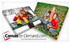 "$100 towards your memories on canvas at Canvas on Demand (more details about Canvas on Demand at  <a href=""http://www.canvasondemand.com"">http://www.canvasondemand.com</a>)"