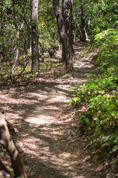 The trail to Hike Inn