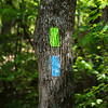 The blue blaze is for the Applician Trail approach trail.  The green blaze marked the trail to Hike Inn.