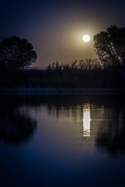 Moon reflecting over one of the ponds