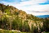 Black hills landscape and Custer State Park