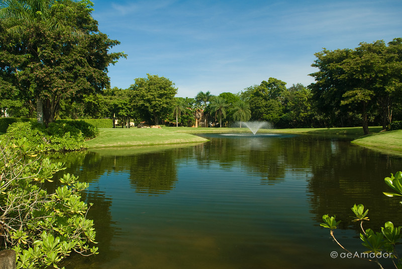 """The Pond by the Clubhouse""<br /> _DSC0295aeamador©-DB-C"