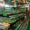 aeamador©-HK08_DSC0092 Kowloon ( ).
