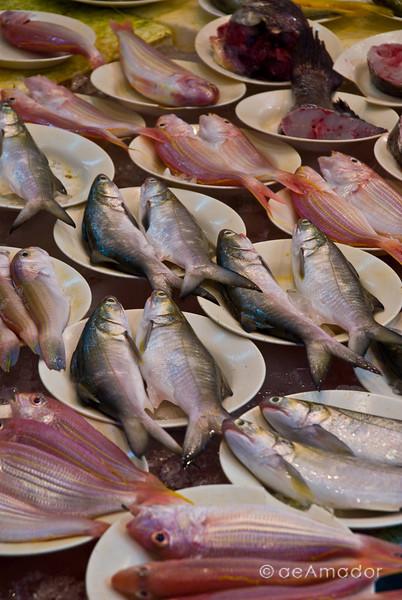aeamador©-HK08_DSC0248     Saukiwan market. Saukiwan, Hong Kong island.
