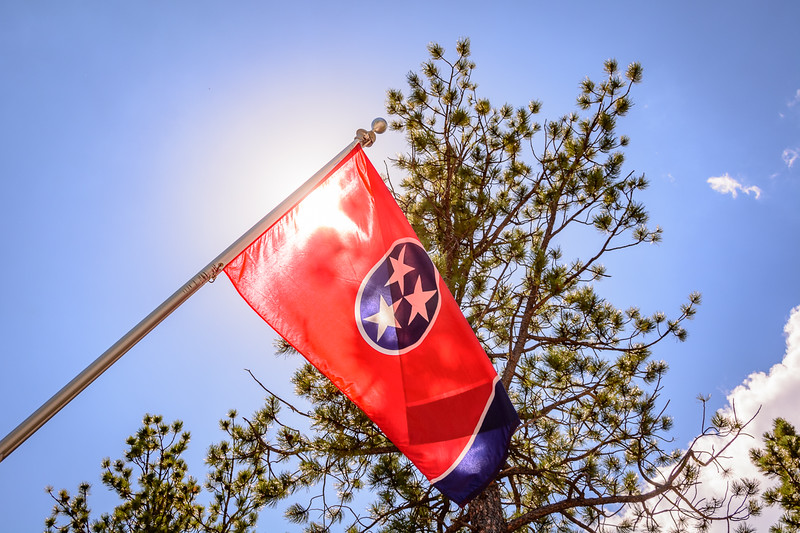We found the Tennessee flag along the avenue of state flags.