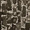 """""""Cobblestones""""<br /> aeamador00428faeamador©-OSJM1"""