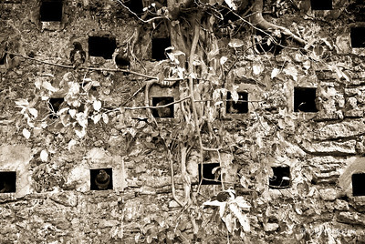 """Pigeon Park"" _DSC0012aeamador©-OSJM1"