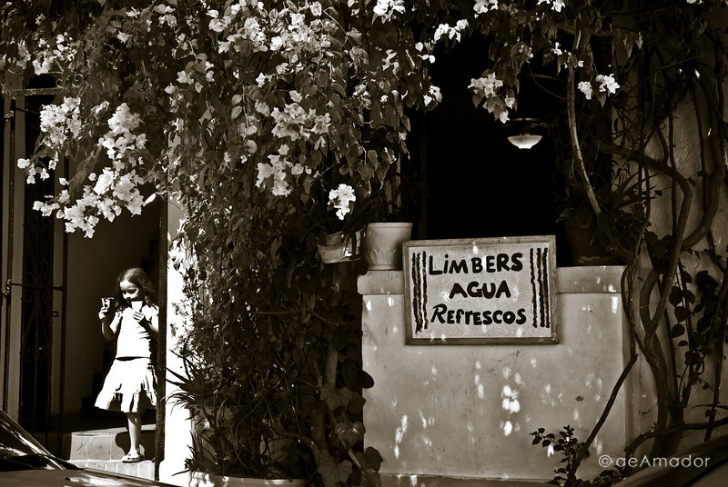 """Limbers: A Neighborhood Tradition""<br /> _DSC0116aeamador©-OSJM2"