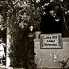 """Limbers: A Neighborhood Tradition""<br /> _DSC0116aeamador©-OSJM2"