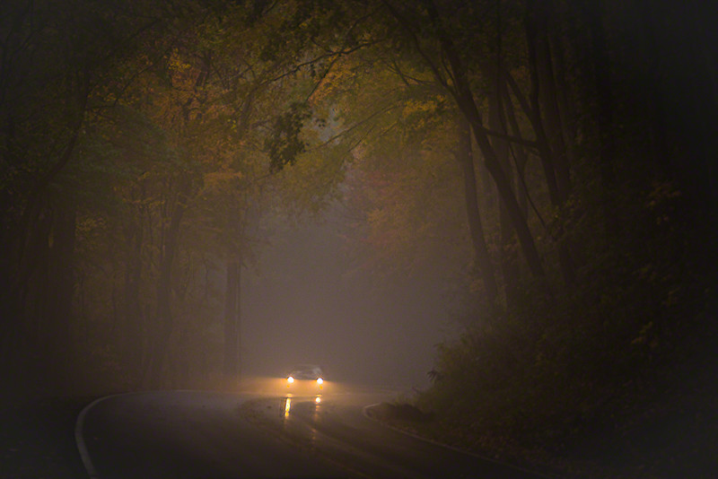 Drivers had to use their headlights in this fog.