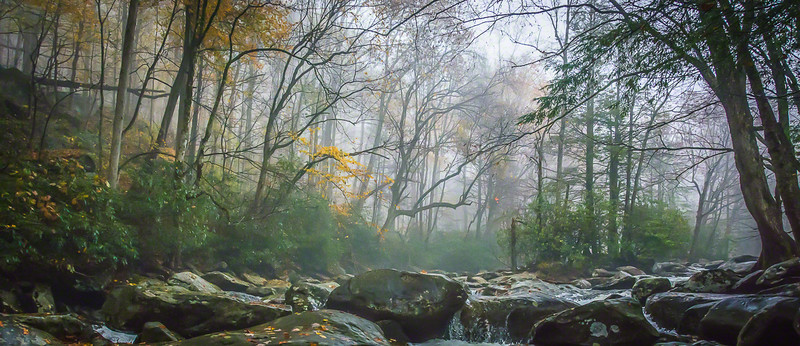 Upstream fog