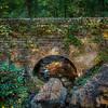 Vine-covered stone bridge over a creek