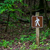 There are nice hiking trails in the park and they are generally well marked.
