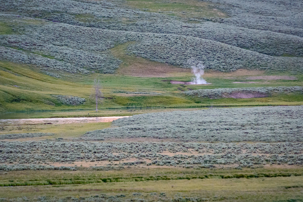 There are many geothermal features in Yellowstone. Here is a random one we saw on the last drive out of the park.