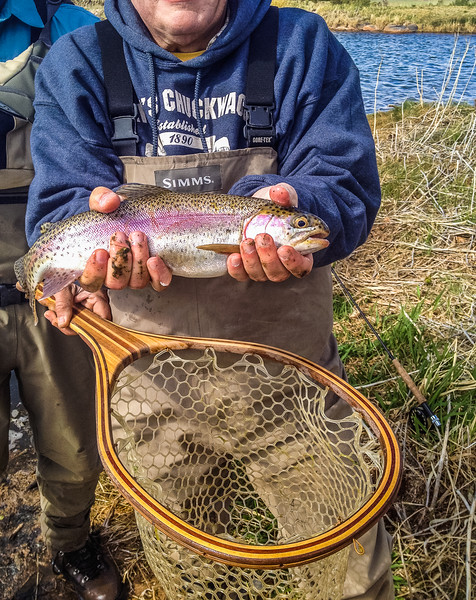 We kept reeling them in...about 9 brown trout and 6 rainbows all together I think.