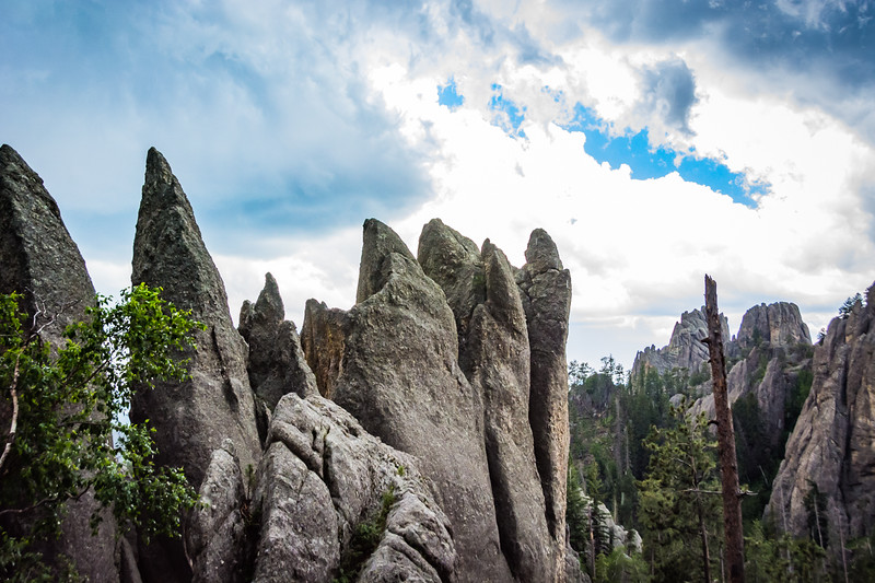 These columns of stone slice through the area.  These, along with the single car tunnels, contribute to the name Needles Highway.