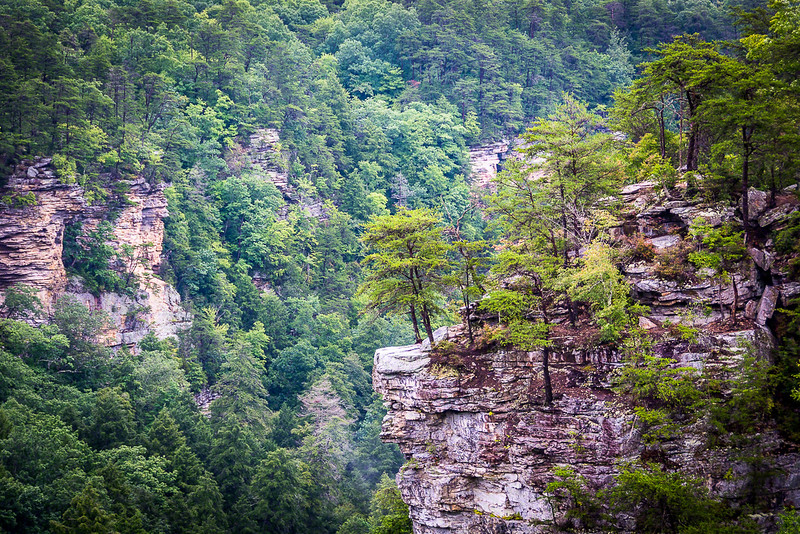 One view into the gorge