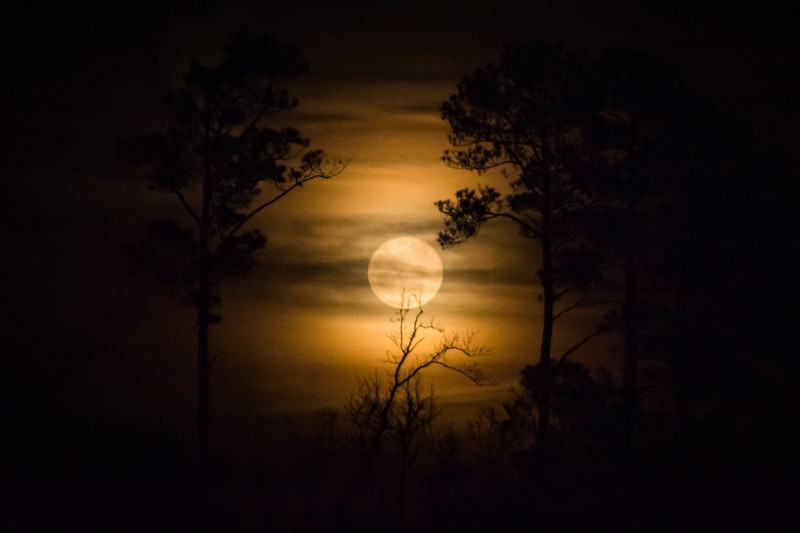 Later I ventured back out to capture this shot of the full moon.