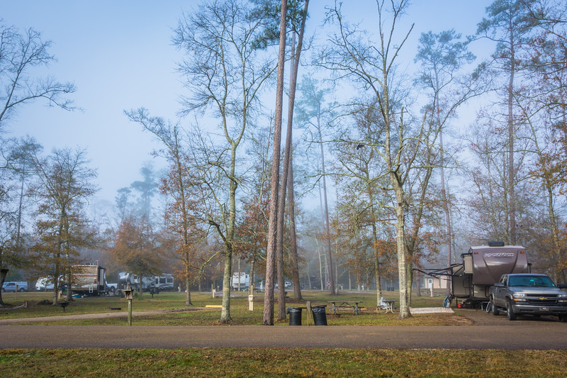 In the morning a light fog added a bit of atmosphere to the campground.