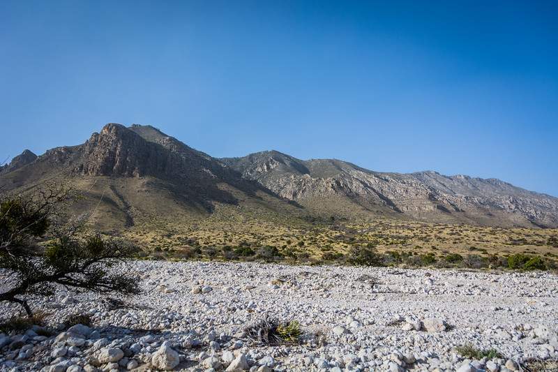 Here is a better view of the wash near the campgound with the Guadalupe mountains in the background.  The mountains dominate many of the landscape photos taken in the park.