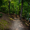 With only a few exceptions, the trails were shaded with a dense canopy of trees.