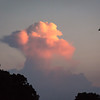 This cloud head captured the last bit of sunlight before dark.