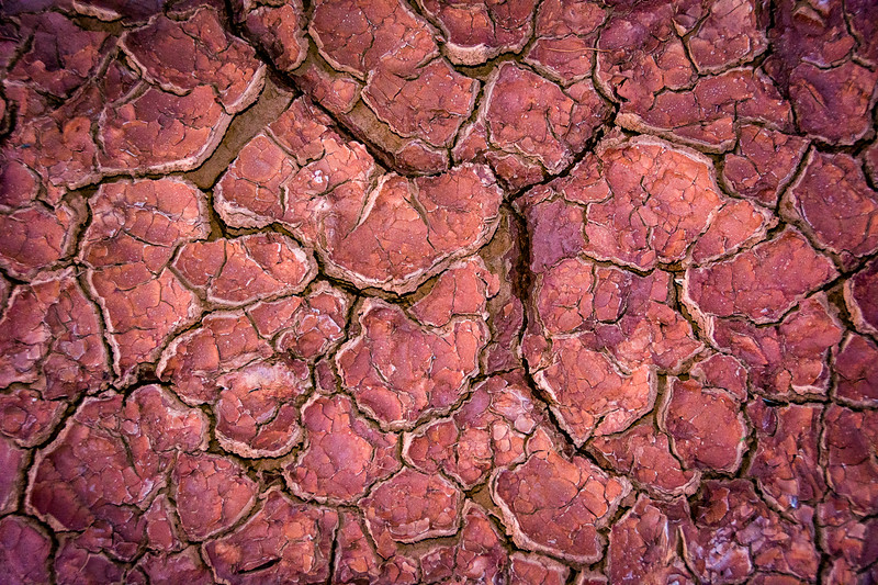 In some areas a thin layer of soil covers the porous desert sand and forms puddles when it rains.  When the sun dries the soil it leaves interesting patterns.