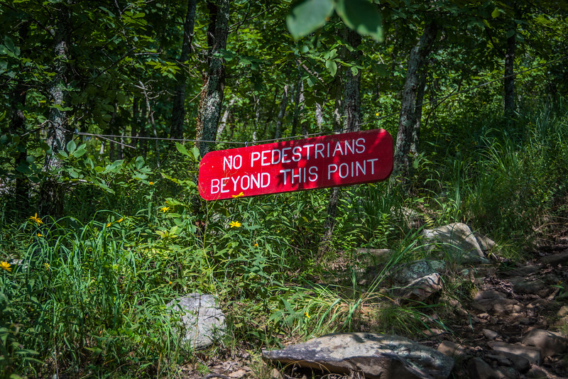 This is funny because anyone who climbed high enough to read this sign is a hiker, not a pedestrian.