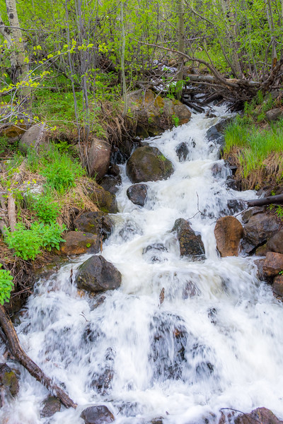 The streams were full from snow melt runoff.