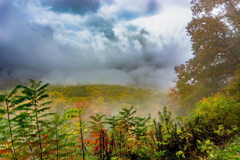 The fog and sun came and went unpredictably, creating an interesting Fall landscape.