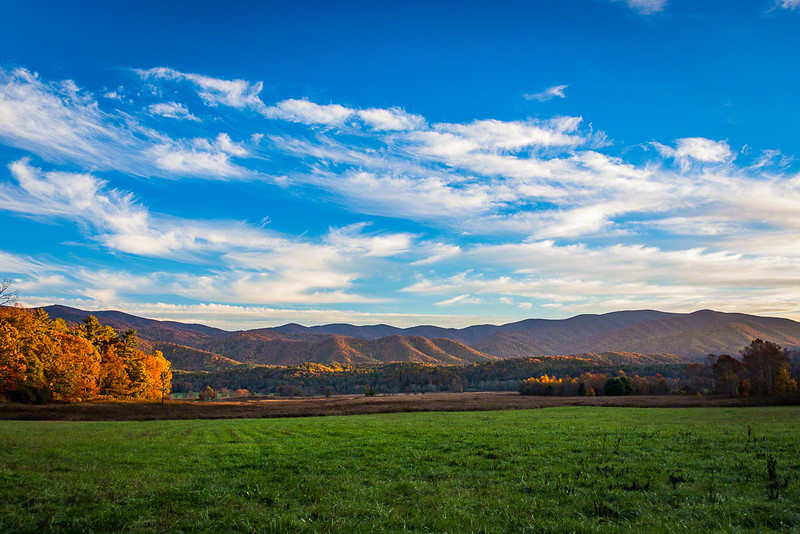 This study in contrasts caught my eye, blue sky, green pasture, fallow fields, and rolling hills of changing color.