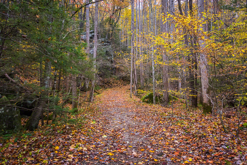 This trail in the Greenbrier area was well maintained and meandered along large rock formations like those ahead.