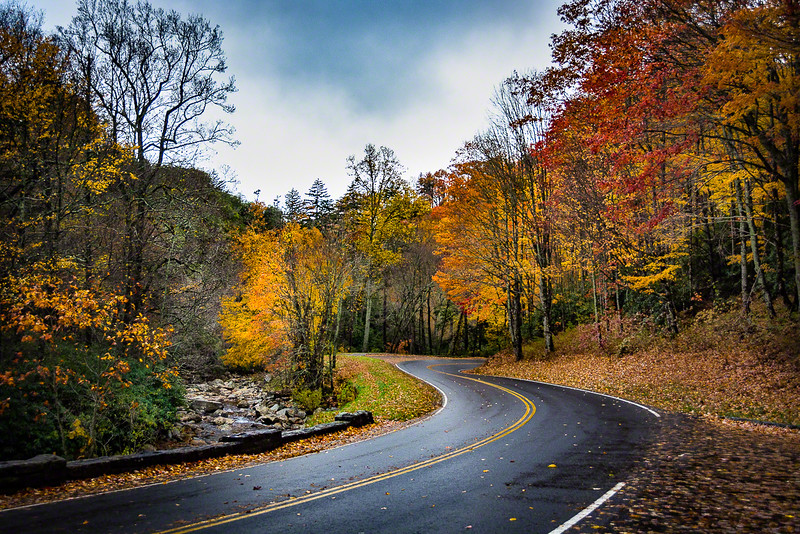 The clouds, wet roads, streams, and changing leaves presented a lot of eye candy.